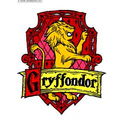 BOX GRYFFONDOR